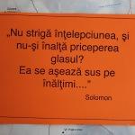 IMG_2242